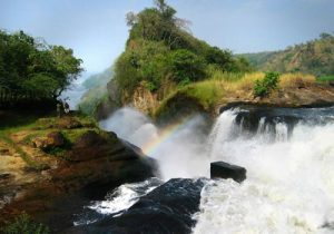 murchison falls national-Uganda safari travel guide