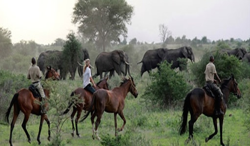Horseback riding safaris-Tanzania safari tours and travel guide