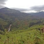 nature walk in congo-guided nature walk